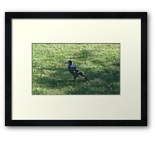 Early Bird digests the Worm Framed Print