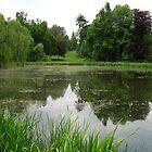 Vacratot_Botanical GardenNo1_Hungary2011May by ambrusz