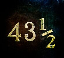 forty three and a half by Catherine  Regan
