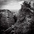 Brimham Rocks  by clickinhistory
