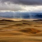 Rain in the Namib by Rudi Venter