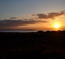Sunrise On Alcatraz by Nic Horton