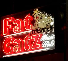 Fat Catz Saloon, French Quarter by SuddenJim