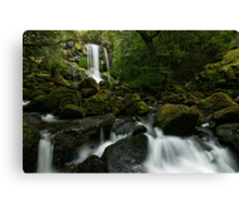 Green Green Hidden Falls Canvas Print