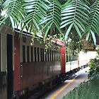 Kuranda Rail  by Scott Schrapel