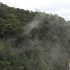Kuranda Water Falls by Scott Schrapel