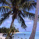 Exotic Bora-Bora by simonescott