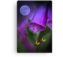 Foxgloves under the moonlight Canvas Print