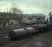 Beyer Garrett Steam Engine @ Albury, Australia 1980 by muz2142