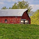 Red Barn on a Hill by Sheryl Gerhard