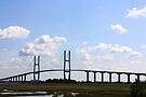 Sidney Lanier Bridge, Brunswick, Georgia by AuntDot