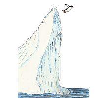 Gentoo Penguin jumping off an Iceberg Photographic Print