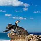 Cormorant by Antoine de Paauw