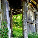 Old Tack Room Doorway by Elaine Bawden