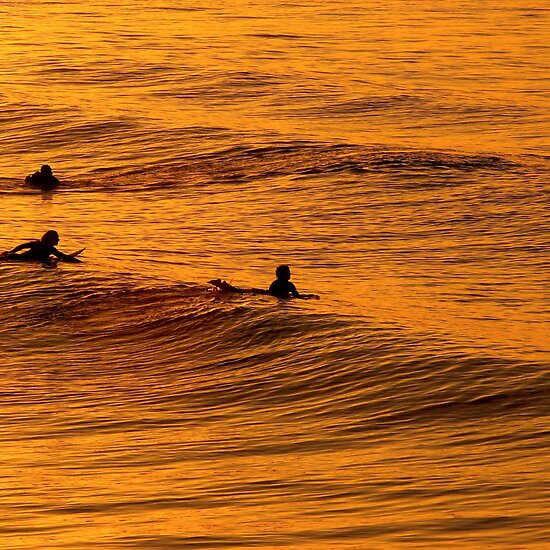 gold coast sunset. Surfing at Sunset, Gold Coast