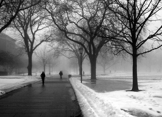 http://ih3.redbubble.net/work.2465719.2.flat,550x550,075,f.foggy-day-in-winter.jpg