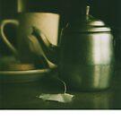 Polaroid: still IIII by bluecitrusart