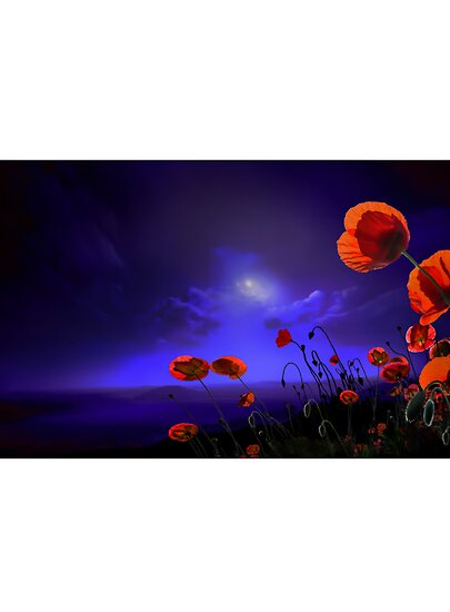 Poppies Blue