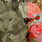 cat and roses by angeloaguinaldo