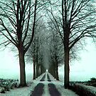 Snow Photography: Heartshaped Alley Winter Nude - Entrance at Stora Mölla Sweden by Christer Fribrock