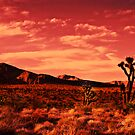 Red Desert Sunset by John Manning