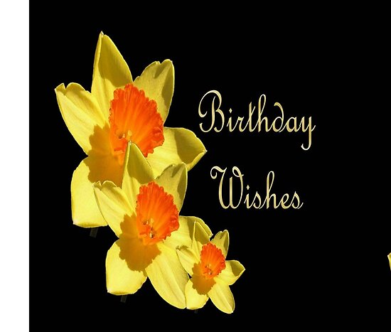 birthday wishes greetings. irthday wishes greeting cards