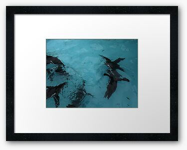 Framed print, bright white matte and black box frame