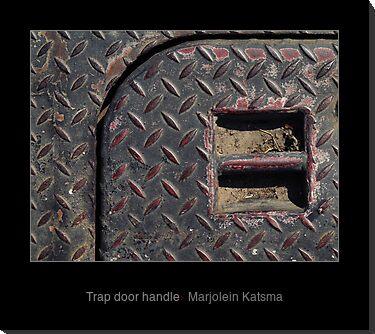 Trap door handle