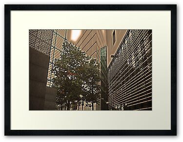 "Framed Print: ""Money does not grow on trees!...."""