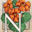 N is for Nasturtium