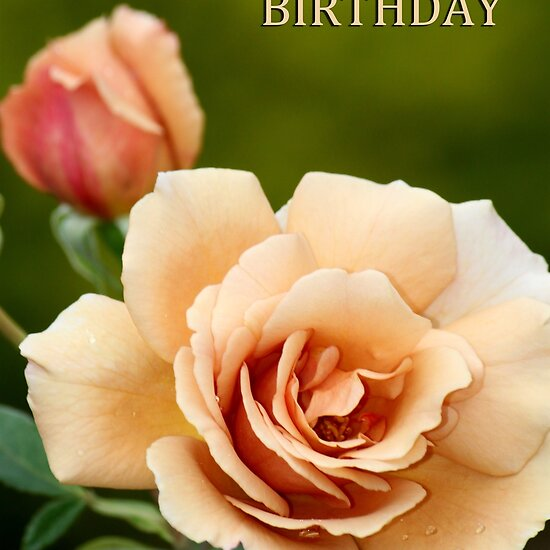 Happy Birthday Roses Pictures. Happy Birthday Rose by