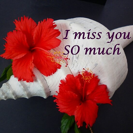 miss you so much images. I miss you so much by