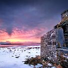 Winter Fire by John Dewar