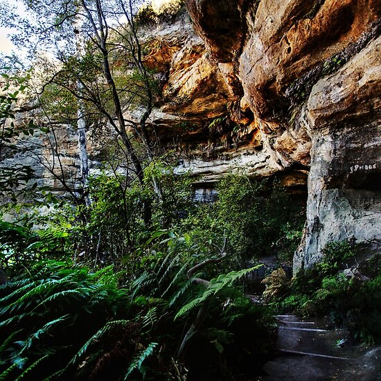 Walls Cave, Blue Mountains, Australia
