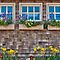 7 in 'Cottage Windows and/or Doors' challenge of group 'Cottage Living-updat…'