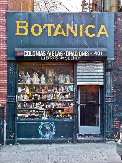 """BOTANICA STORE"" By Cammisacam"