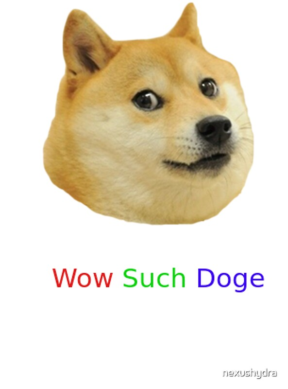 such dog meme - 28 images - wow such original very meme ...