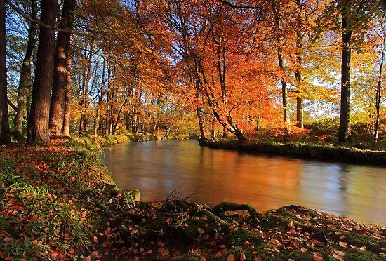 """Braid River near Ballymena, Northern Ireland"" by Hilary ...  River"